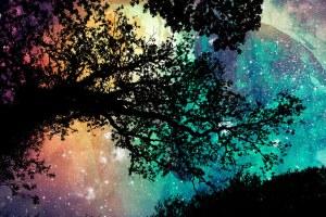 organic universe