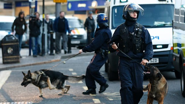 riot dogs